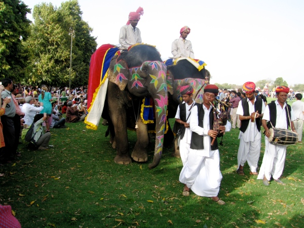 MUSICIANS PARADING IN FRONT OF THE ELEPHANTS AT THE ELEPHANT FESTIVAL