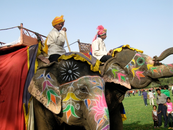 ELEPHANTS AND THEIR MAHOUTS
