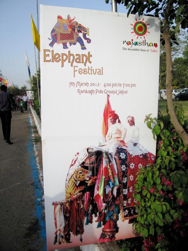 ELEPHANT FESTIVAL  2012