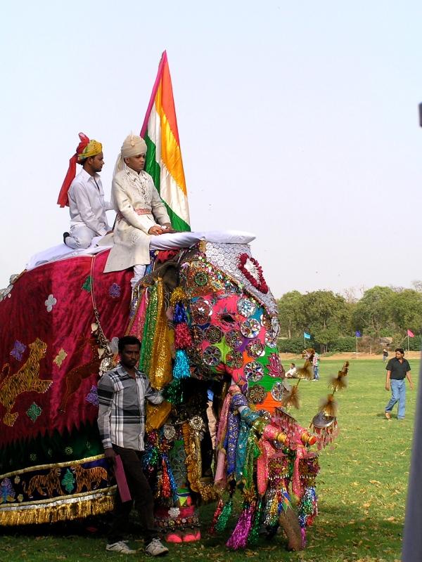 ELEPHANTS BEAUTIFULLY DECORATED