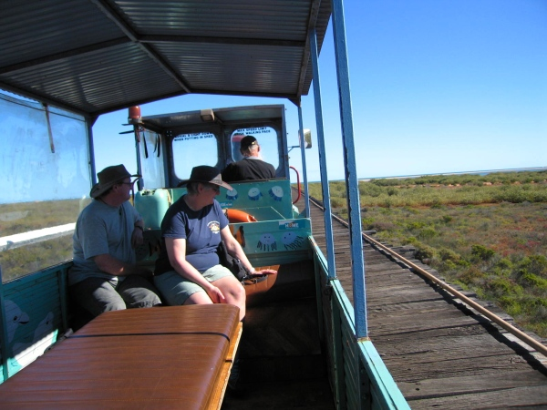 COFFEE POT TRAIN CARNARVON TRAVELING OVER THE ONE MILE JETTY