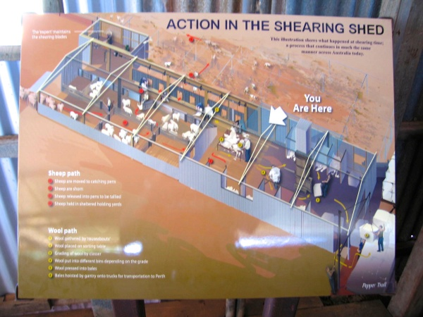 SIGN EXPLAINING THE OPERATIONS OF THE SHEARING SHED