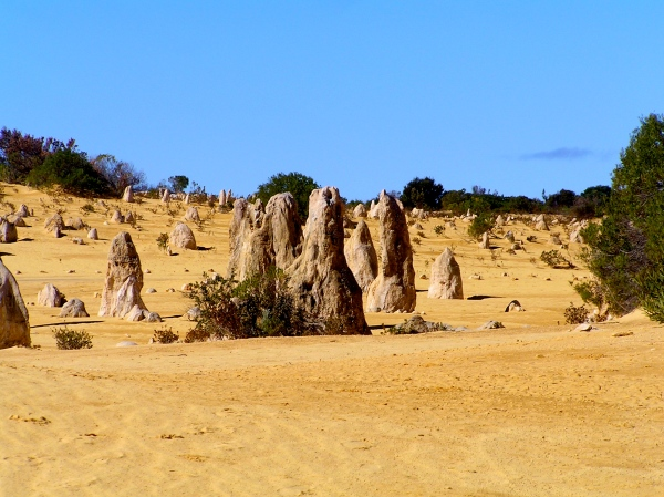 PINNACLES - Formed 25,000 to 30,000 years ago after the Indian Oceans coastal winds eroded the surrounding sand, leaving the limestone pillars exposed to the elements.
