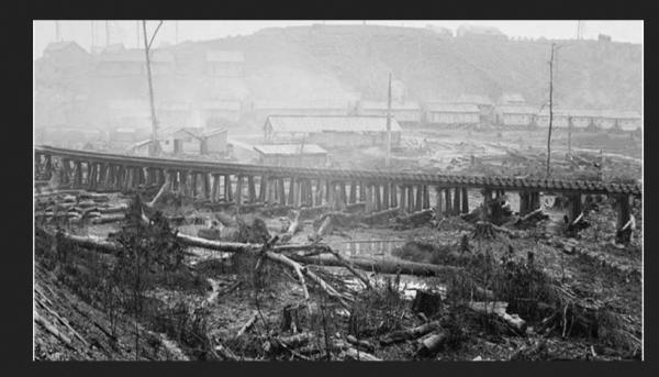 JOHNSONVILLE  1864