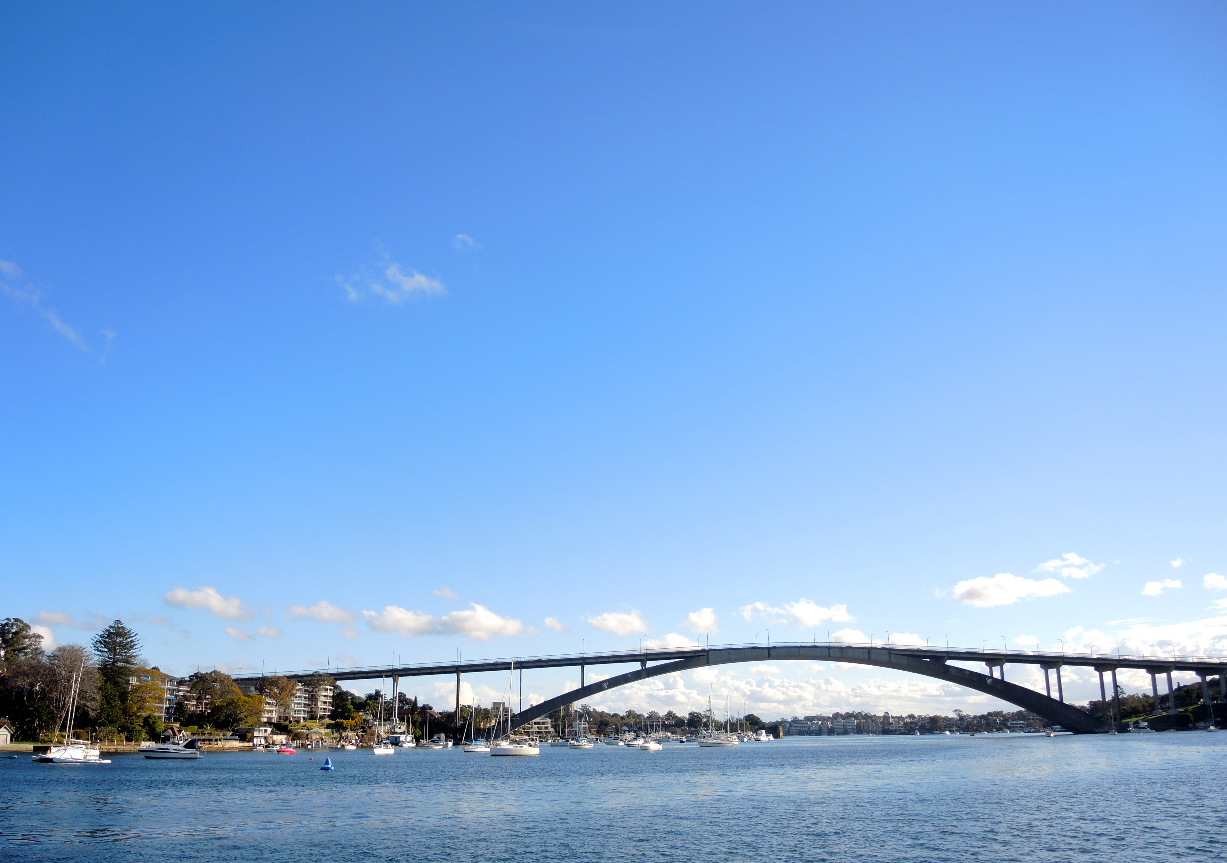 sydney parramatta ferry - photo#27