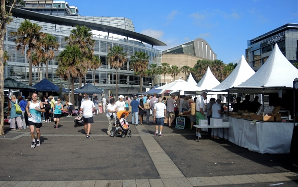 PYRMONT GROWERS MARKET  DECEMBER 6  2014