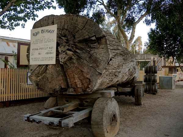 LOG BUGGY  -   ECHUCA