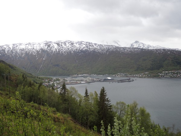 NARVIK SEEN FROM A NEARBY HILL