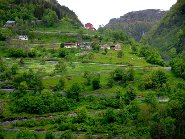 IN ORDER FOR BUSES TO GET TO GEIRANGER THEY MUST NEGOTIATE HAIRPIN TURNS TO GET TO THE BOTTOM.