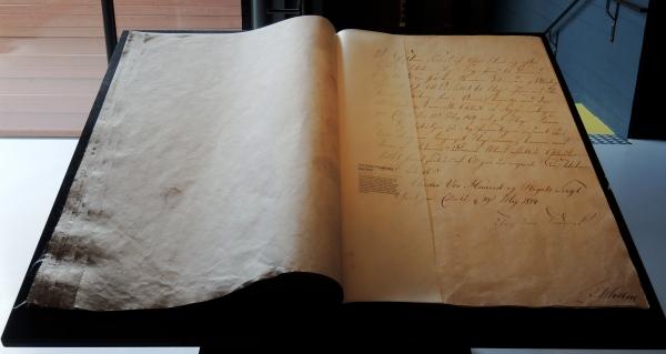NORWEIGIAN CONSTITUTION